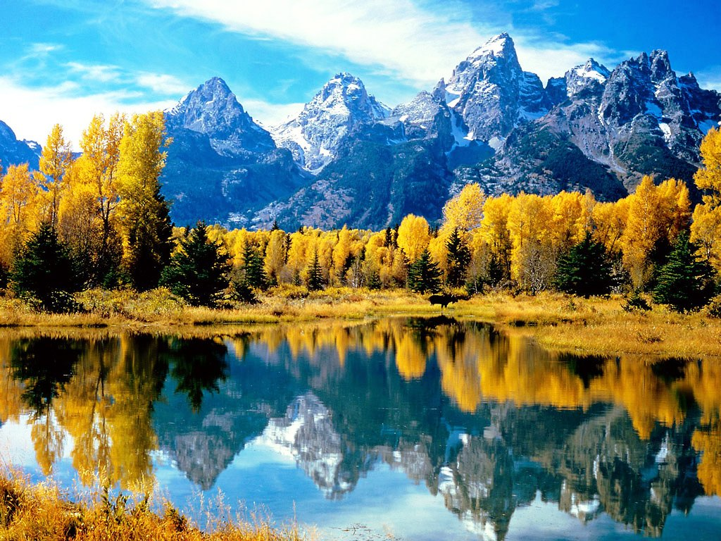 Coach trip usa national parks yellowstone grand tetons for Jackson hole summer vacation