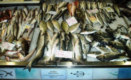 Pula Fish Market Croatia