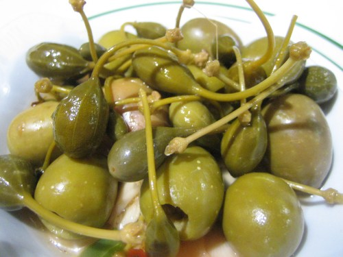 Spain, The Dehesa of Extremadura and the Olive Groves of Castilla