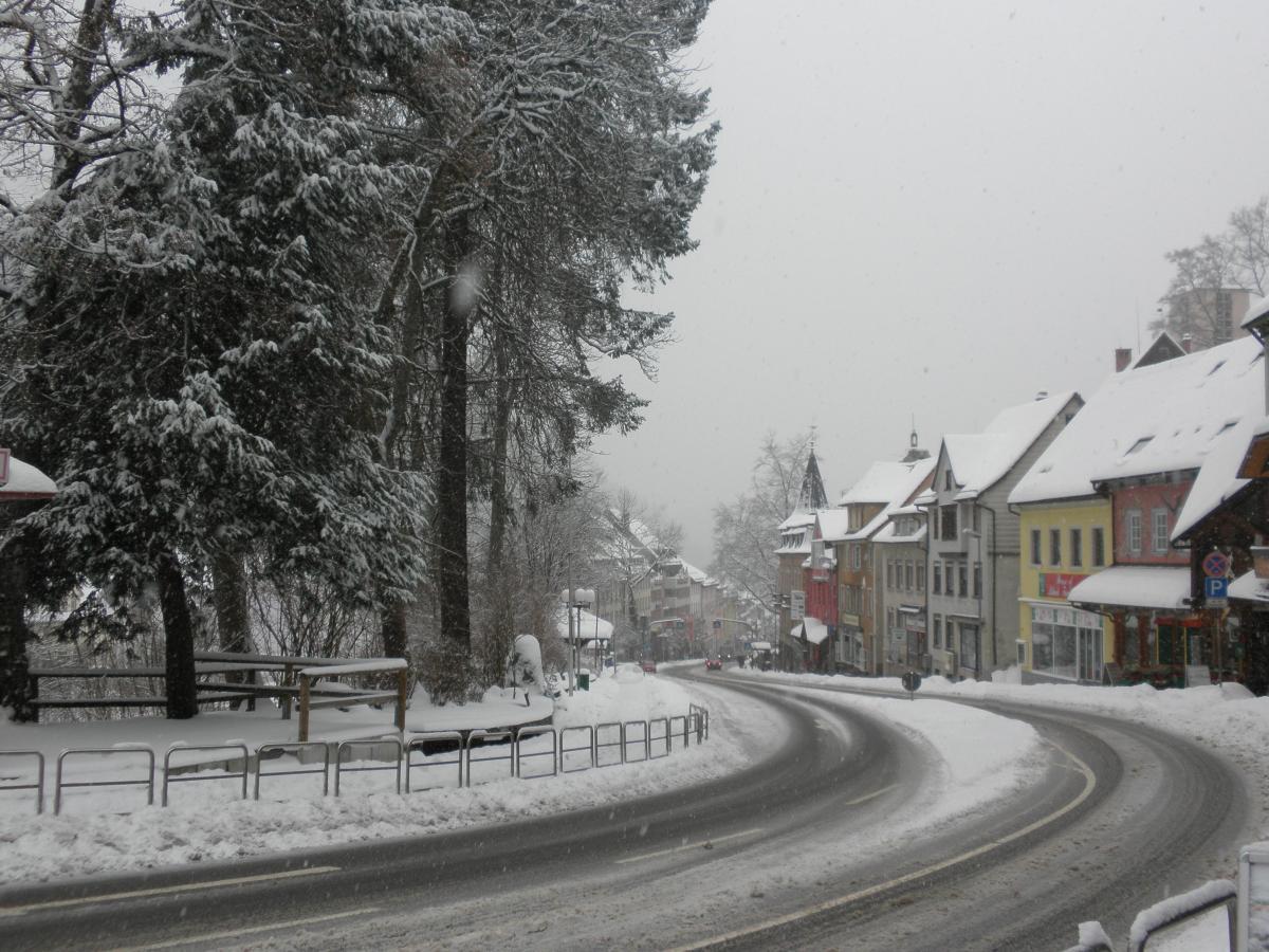 Germany, Triberg the Cuckoo Clock Capital of the World