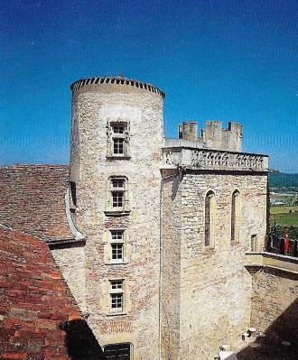 Chateau de MERCURES