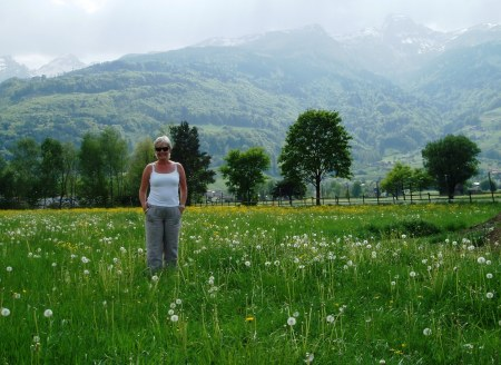 Switzerland - Meadow beneath the Alps
