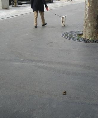 Paris Dog Poo