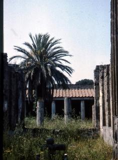 Pompeii Vesuvius Italy