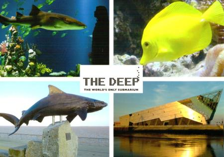 Hull - The Deep